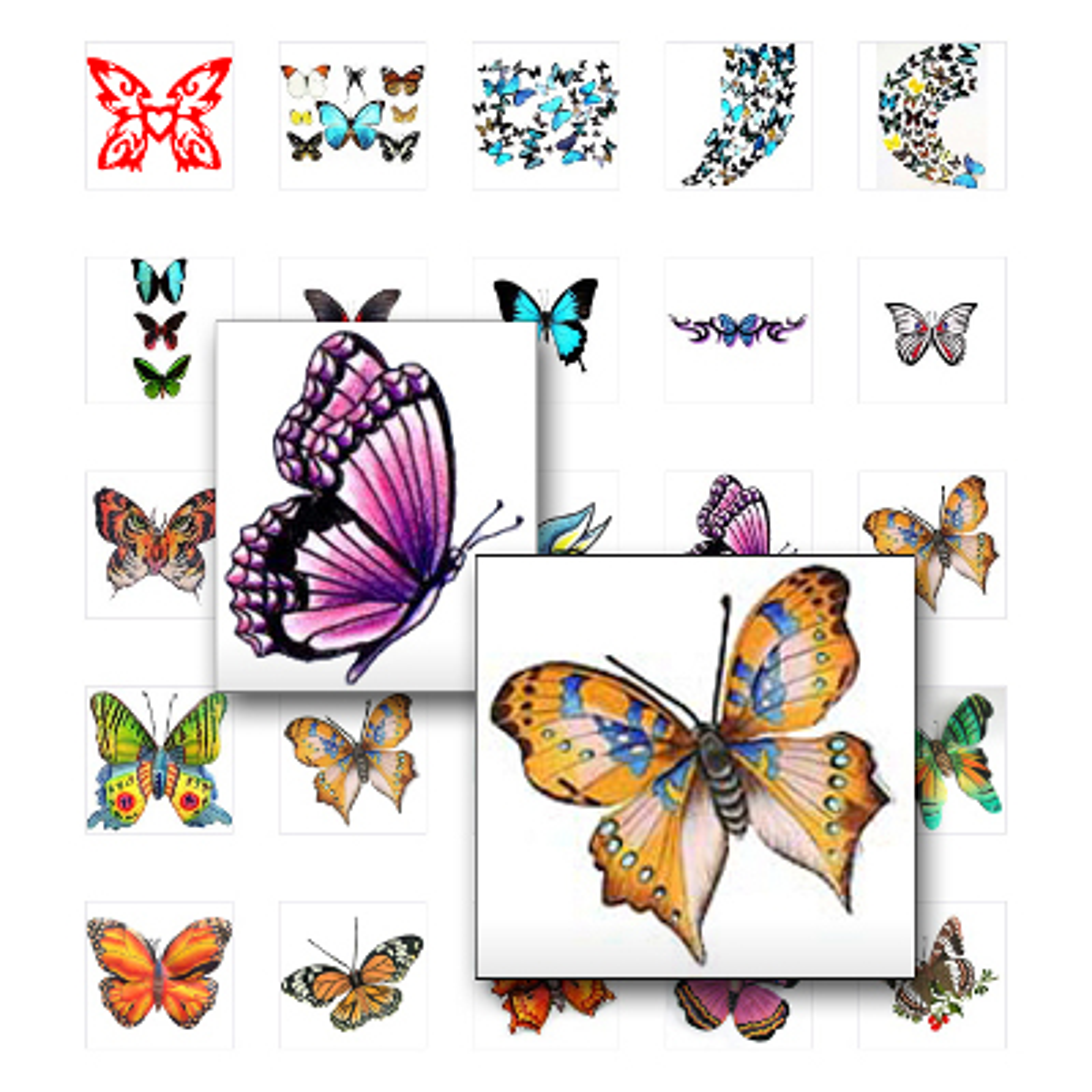 Schmetterling Tattoos sind vor allem bei Frauen sehr beliebt. Die ...